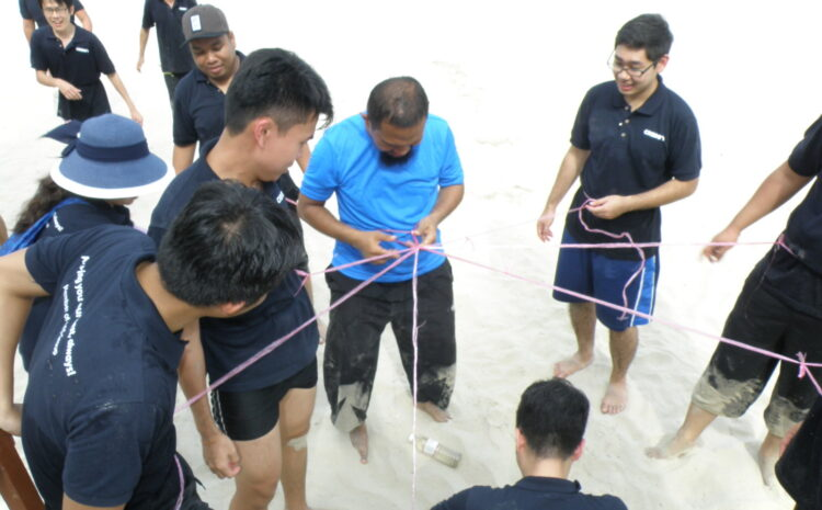 QMC Team-building 2017